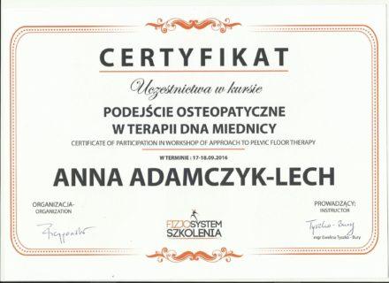aal_podejscie osteopatyczne w terapii dna miednicy