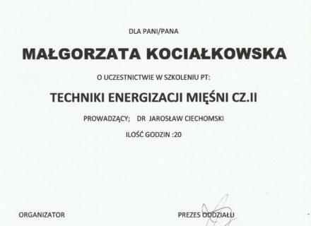 gk_techniki_energizacji_miesniII