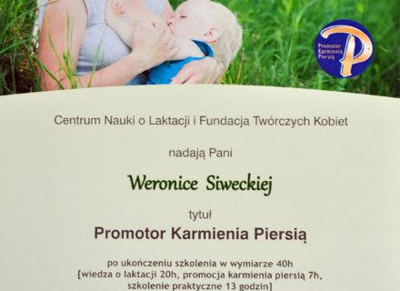 ws_promotor